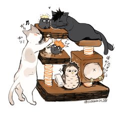 , cats, little crows and owls xD Haikyuu Kageyama, Haikyuu Chibi, Hinata, Manga Haikyuu, Kuroo Tetsurou, Akaashi Keiji, Haikyuu Funny, Haikyuu Fanart, Kagehina