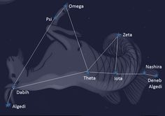 Capricorn Constellation | ... constellation of Capricornus, the goat. But the goat is traditionally
