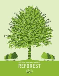 """Recycle, Replant, Rethink- Reforest"". (Source: ryantimesfive.blogspot.com)  While simple, we love this poster 's use of words that spark action.   A contribution to the Yasuni-ITT Fund will help reforest land previously affected by oil drilling: http://mptf.undp.org/yasuni"