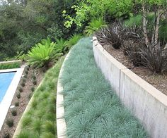 Don't you love the clean-lined look of a yard with modern landscaping? Like so many design lovers, I'm trying to create a contemporary feel in my outdoor space, and while at times I get a big picture…MoreMore  #ModernLandscaping