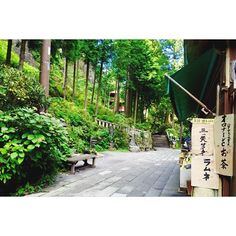 【moe.hatsu】さんのInstagramをピンしています。 《#gm#おはよう #三ツ矢サイダー#ラムネ#オロナミンC#お茶 #空#sky#青空#神社#群馬#榛名山#和#日本#japan#japon#haruna#gunma#wa#bluesky#ciel#cielbleu#shrine#森#forest#自然#nature》