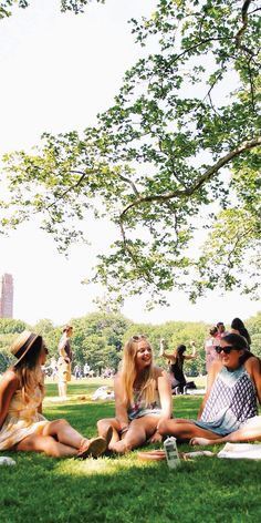 Picnics in Sheep's Meadow, Central Park NYC - by Chloe Barry-Hang