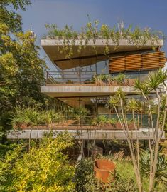 Casa Erasto's pavilion-like presence makes for a refined family home in Mexico City London Architecture, Interior Architecture, Interior And Exterior, Contemporary Architecture, Residential Architecture, Sustainable Architecture, Interior Design, Room Interior, Luz Natural