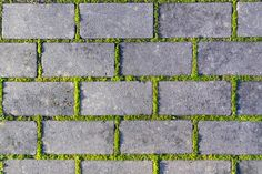 Cobbles Close-up With A Green Grass In The Seams. Old Stone Pavement Texture Background