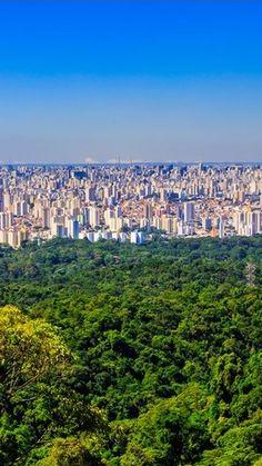 Concrete vs Jungle ... Saint Paul - San Pablo - San Paolo - São Paulo - Brazil