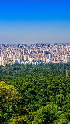 Concrete vs Jungle...Parque Estadual da Cantareira (one of the largest urban jungles in the world) limits the expansion of the concrete jungle to the north of São Paulo, Brazil.