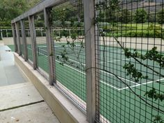 malibu trellis Backyard Plan, Fencing, Trellis, Terrace, Gardens, Outdoor Structures, Cat, Balcony, Fences