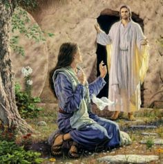 Joe Catholic - Today's Navarre Bible commentary reflects on the resurrection of Jesus and His appearance to the holy women.