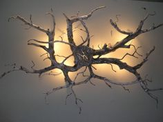 Beautiful wall sconce made from found wood.- Beautiful wall sconce made from found wood. Beautiful wall sconce made from found wood. Driftwood Chandelier, Driftwood Wall Art, Tree Branch Decor, Deco Led, Unique Wall Decor, Wood Lamps, Wood Creations, Front Door Decor, Beautiful Wall