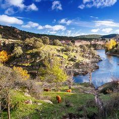 33 Ideas De Turismo Rural En La Sierra De Madrid Turismo Rural Turismo Rurales