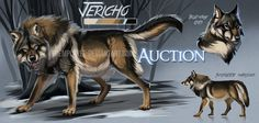 Hunky wolf auction: CLOSED by Chickenbusiness on DeviantArt Big Wolf, Lone Wolf, Wolf Name, Anime Wolf Drawing, Twilight Wolf, Wolf Sketch, Wolf Character, Cute Animal Drawings, Wolf Drawings
