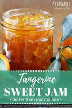 A twist on the usual, this tangerine marmalade recipe is less bitter than standard marmalade. You might even call it tangerine jam. Without the bitter peels, this becomes a much smoother spread. via @Attainable Sustainable Jelly Recipes, Fruit Recipes, Citrus Recipes, Tangerine Recipes Baking, Ginger Jam, Ginger Marmalade Recipe, Jam And Jelly, Marmalade, Argentina