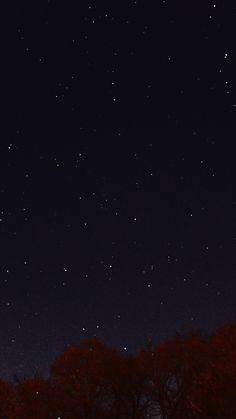 Night Sky Dark Star Lights Tree Nature iPhone 8 wallpaper