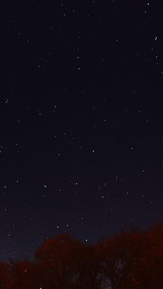 Night Sky Dark Star Lights Tree Nature #iPhone #6 #plus #wallpaper