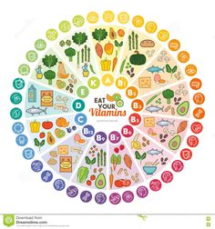 nutrition - Vitamin vegan food sources and functions rainbow wheel chart with food icons healthy eating and healthcare concept Poster Nutrition Chart, Vegan Nutrition, Health And Nutrition, Nutrition Guide, Nutrition Poster, Nutrition Products, Nutrition Club, Nutrition Classes, Baby Puree