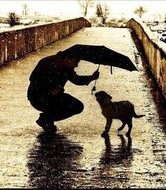 So sweet...share my umbrella, friend.