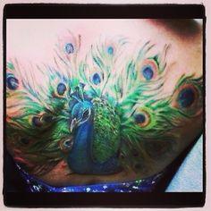 Amazing peacock tattoo