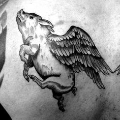 Hey, Friend's are you looking for pig tattoo designs for your body art. Then these tattoo collection for your here you will get some cool and unique collection of pig tattoo. Rooster Tattoo, Sheep Tattoo, Photomontage, Future Tattoos, Tattoos For Guys, Shakespeare Tattoo, Blackwork, Familie Symbol, Pig Sketch