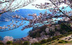 Spring Setonaikai