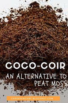 Read more about coco coir at http://gardeningabc.blogspot.com/2013/07/coco-coir-in-gardening.html