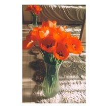Popular - We Heart Pics Heart Pics, Heart Pictures, Glass Vase, Peace, Popular, Photography, Home Decor, Homemade Home Decor, Most Popular