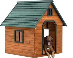 how to build an extra large dog house ehowcom yumm pinterest extra large dog house large dog house and largest dog