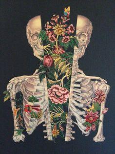 ребра арт - Поиск в Google