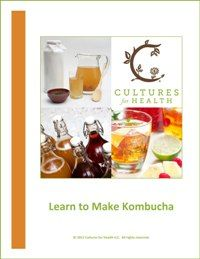 this site has a free 56 page e-book on making kombucha