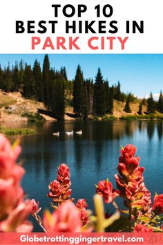 The 10 best hikes near Park City and Salt Lake City, Utah. From crystal clear water to blooming wildflowers to sweeping city views, these won't disappoint. Usa Travel Guide, Travel Usa, Travel Tips, Budget Travel, Travel Destinations, Park City Utah Summer, Utah Vacation, Yellowstone Vacation, Salt Lake City Utah