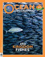 mag latest 39