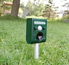 $34.99 Animal and Bird Repeller with 5 Modes to Repel Mice, Rats, Dogs, Foxes, Martens, Cats, Racoons, Badgers, Skunks, Bats, Birds and Rodents Iwise http://www.amazon.com/dp/B00YCTTGS2/ref=cm_sw_r_pi_dp_HlmBvb1EP7R2B