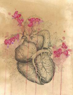 HUMAN NATURE Anatomy by CasstronautMeder
