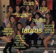 Taurus Memes, Zodiac Signs Taurus, Taurus Facts, Astrology Signs, Zodiac Facts, Zodiac Funny, Taurus Quotes, Scorpio And Cancer, Taurus And Cancer