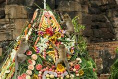 Attend Monkey Buffet Festival, Lopburi, Thailand - #bucketlist