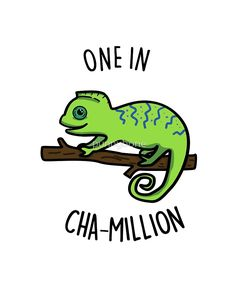 'Cute One In Cha-million Animal Pun' Sticker by punnybone Funny Food Puns, Punny Puns, Cute Puns, Puns Jokes, Funny Memes, Jokes Kids, Animal Puns, Pun Card, Funny Illustration