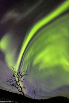 Aurora, Nature, Northern Lights, Heavens, Naturaleza, Nordic Lights, Aurora Borealis, Nature Illustration, Off Grid