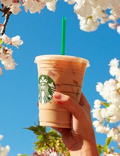Starbucks' new drink is EVERYTHING