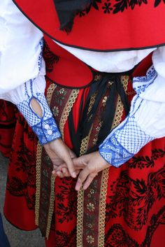 Detail of embroidery, Traje de Carbajal, Zamora, Spain.