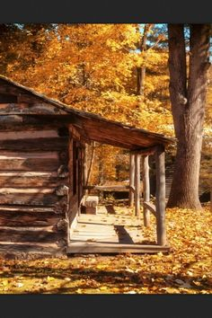 The perfect little Cabin out in the woods away from the world