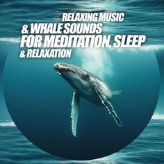 Relaxing Music & Whale Sounds For Meditation, Sleep & Relaxation, by Music2Meditate.org