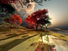 Beautiful Pictures - Community - Google+