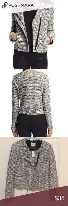 d2b8688152921a NWT Ann Taylor Loft Asymmetrical Tweed Moto Jacket NWT Ann Taylor Loft Salt  & Pepper Texture