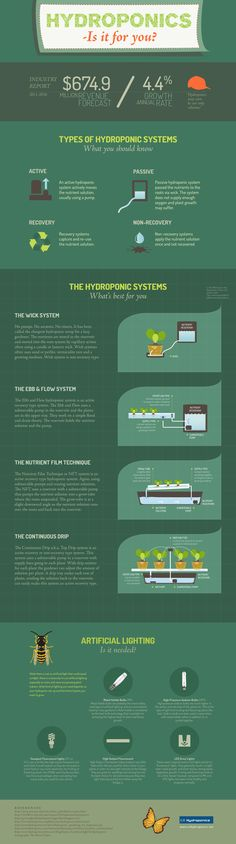 Hydroponics Infographic - types of hydroponics systems and more information