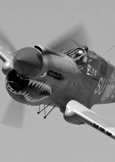 Curtiss P40 Warhawk, made famous by the 1st AVG (American Volunteer Group) know as the Flying Tigers of the Chinese Air Force (1941-1942). Basically a privately contracted, well paid group of flying mercenaries recruited with Presidential authority from the USN, USMC, USAAF (Army Air Corps) prior to the United States entry into WWII. ~redjeep