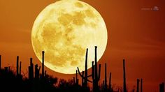 Supermoon - largest and brightest of the year - coming May 5, 2012