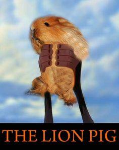 The Lion Pig