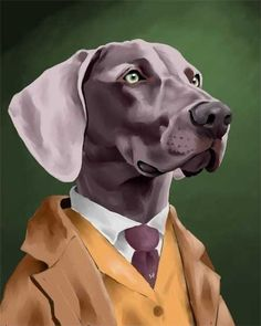 This sharp-dressed Weimaraner belongs in a Wes Anderson film. (Etsy)