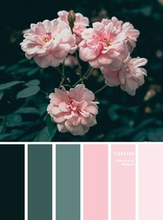 If you use the color wheel it will help give your wedding a polished look. Using a color wheel is very helpful when you're choosing a color scheme so go to the Internet and search for color wheel for weddings and you'll find a number of helpful sites. Color Palette For Home, Color Schemes Colour Palettes, Green Color Schemes, Pink Palette, Green Colour Palette, Wedding Color Combinations, Color Combos, Colour Combinations Interior, Pink Color Combination