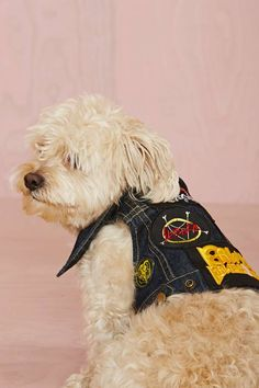 Party Animalz Ruff You Up Dog Vest