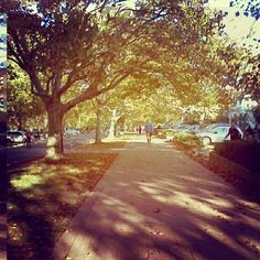 Instagram photo by @misskimlanceley via ink361.com Country Roads, Instagram